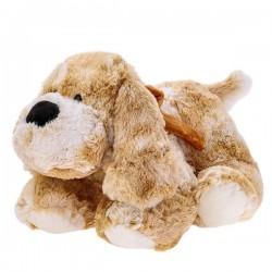 Pluszowy pies Roddy Beppe