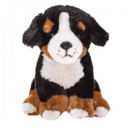Pluszowy Pies Barneński pasterski Beppe