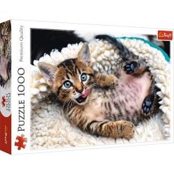 Puzzle Koty 1000 Wesoły kotek Trefl