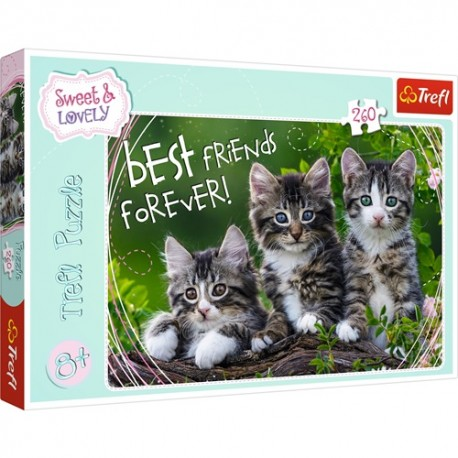 Puzzle Koty 8+ Kocia przyjaźń Trefl