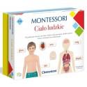 Montessori Ciało Ludzkie Clementoni